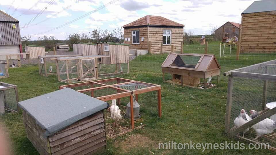 Green dragon eco farm milton keynes kids - The moon dragon the eco tiny house ...