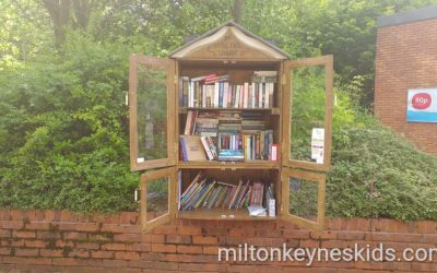 Little Free Library and Dragon Park, Great Linford
