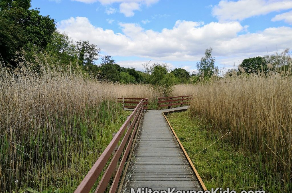 Boardwalk to the bird hide at Walton Lake in Milton Keynes