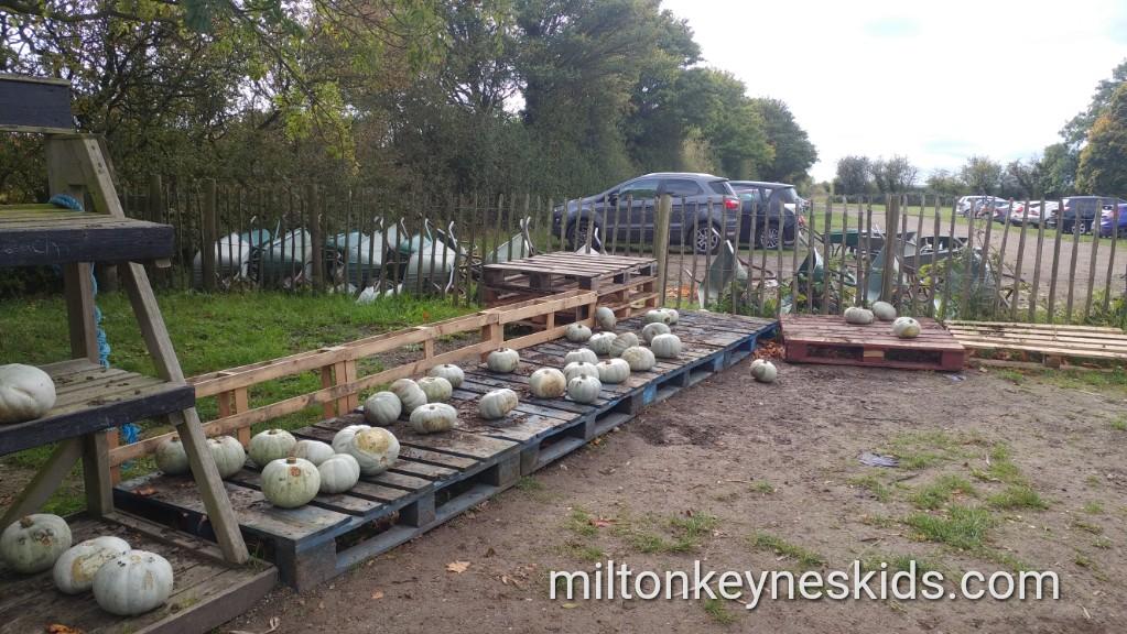 Grove Farm Bedfordshire