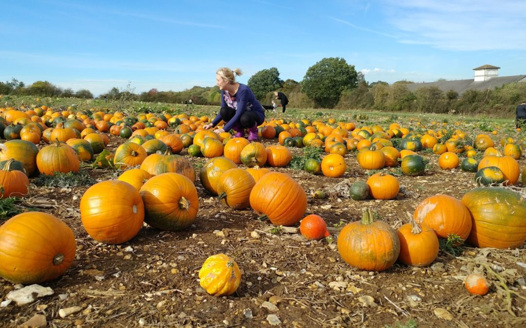 Laura Miller sat among pumpkins at the pop up farm in Hertfordshire