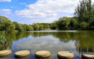 Teardrop Lakes stone in Milton Keynes