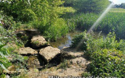 Stepping stones at Tattenhoe Valley Park, Milton Keynes