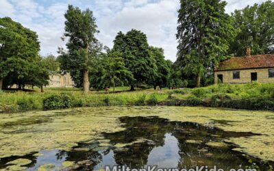 Pond at Great Linford Manor Park