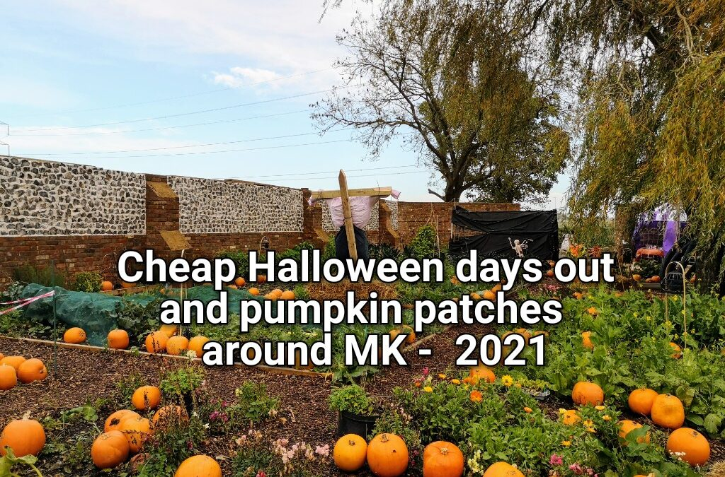 Cheap Halloween days out and pumpkin patches 2021